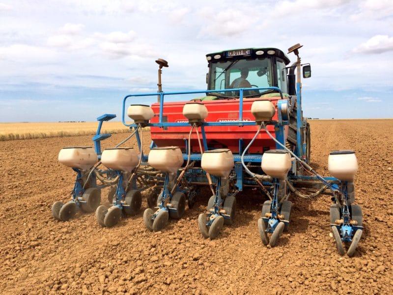 Des perspectives de semis en hausse au printemps : l'attrait du maïs pour les agriculteurs européens